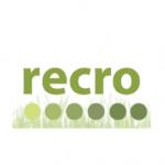 Recro Consulting